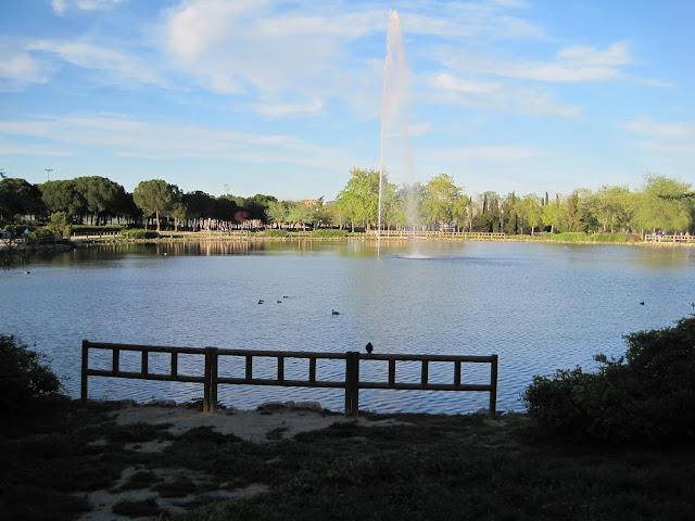 lago / lake
