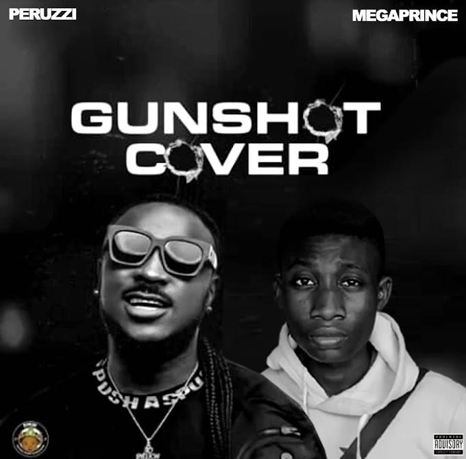 [Music] Peruzzi ft. Mega Prince - GUNSHOT (Cover)