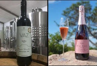 Portaria da ADAB protege vitivinicultores da região da Chapada Diamantina