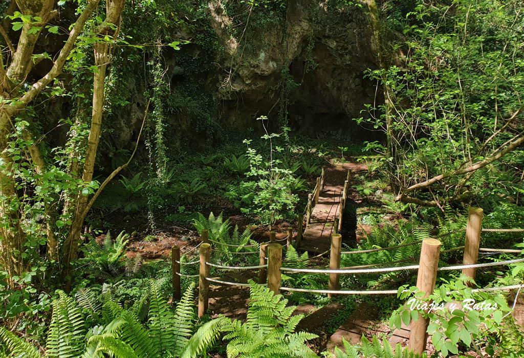 Las Cuevas de Andina