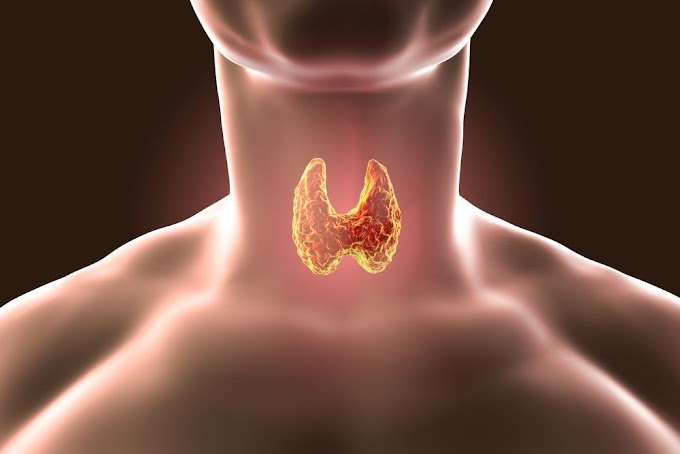 Thyroid Problem & Disorders | why | Symptoms | Cure |
