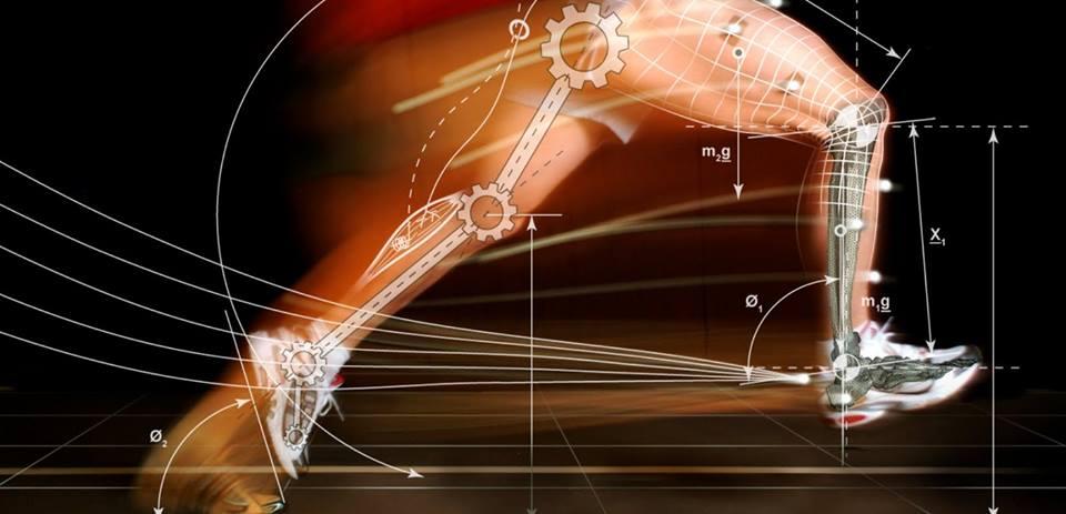 аэробные упражнения для сжигания жира в ногах