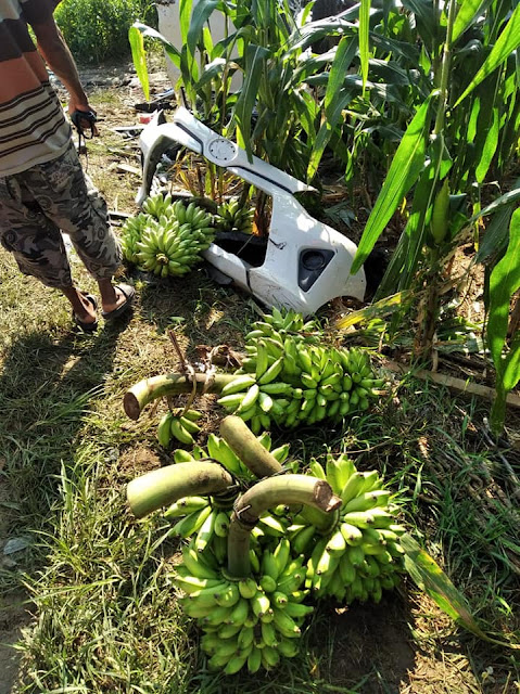 Ketahuan Maling Pisang, Mobil Pencuri Asal Grobogan Ini Rusak Parah Diamuk Warga
