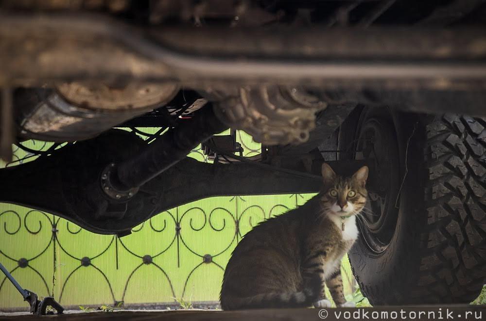 Автомеханик Шмель инспектирует подвеску Соболь 4х4