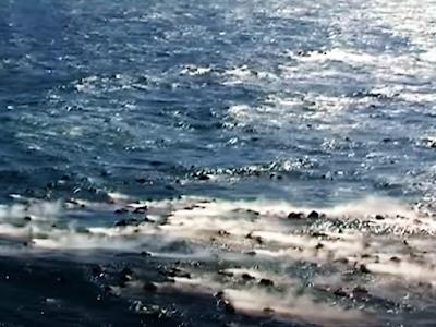 Vulkanausbruch El Hierro - schwimmende Steine