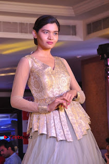 South Indian Celebrities Pos at Love For Handloom Collection Fashion Show  0050.jpg
