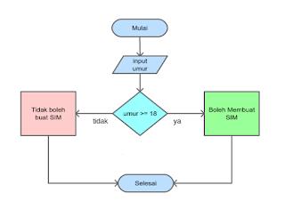Mempelajari Percabangan untuk Membuat Logika Program Python