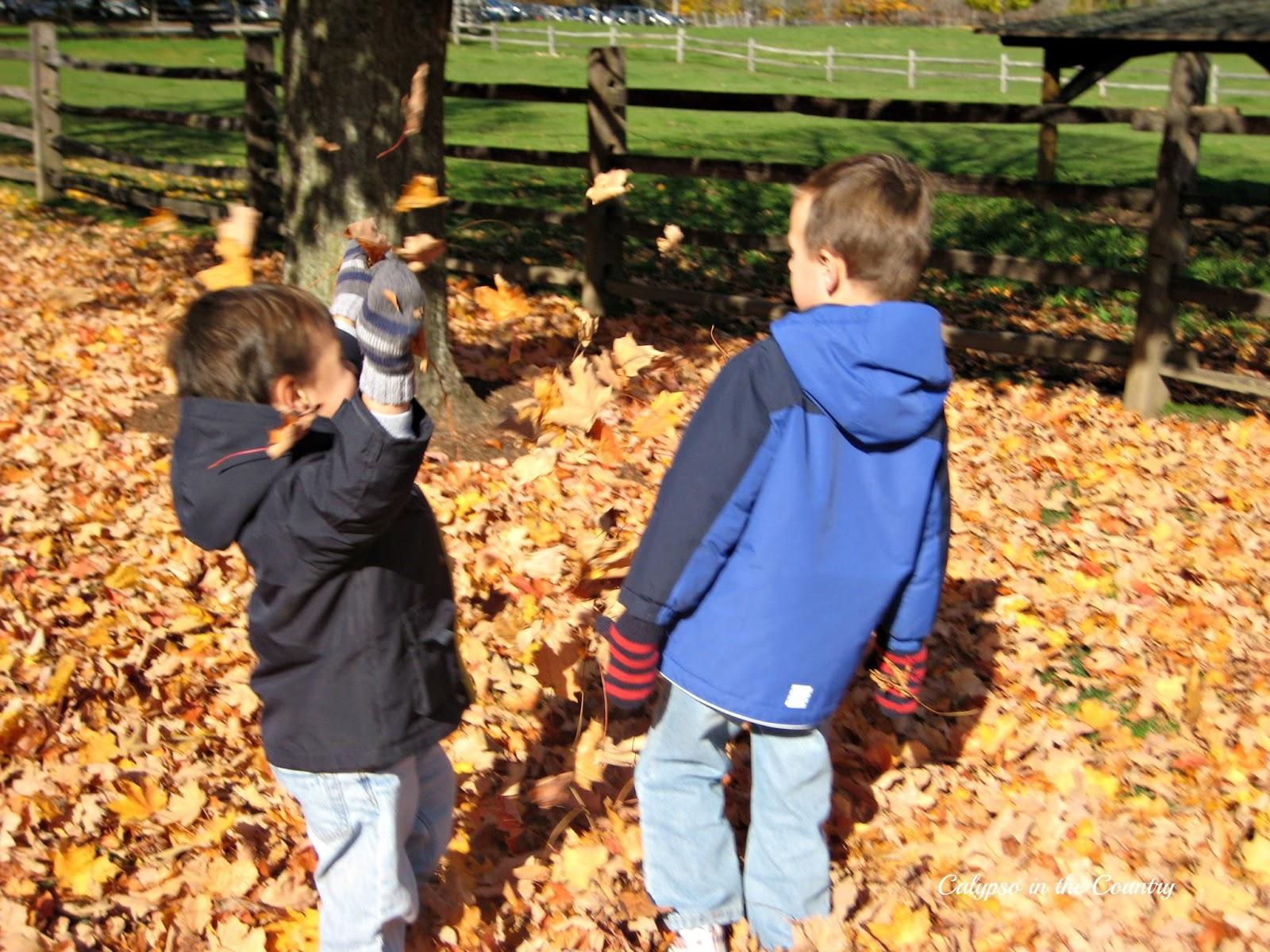 Fall leaf pile