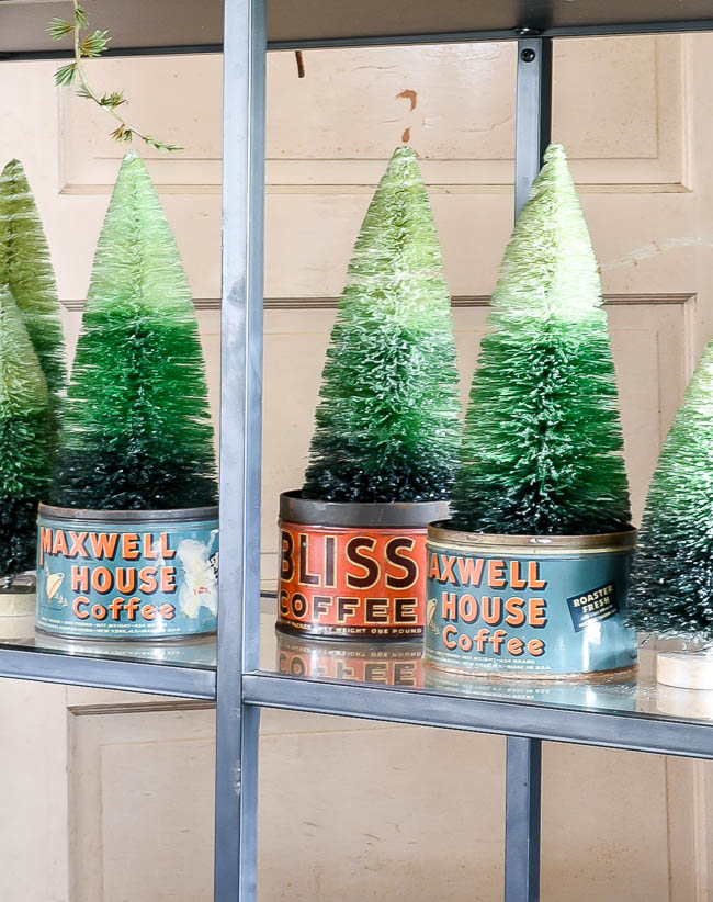 Coffee tins used as planters for bottle brush trees