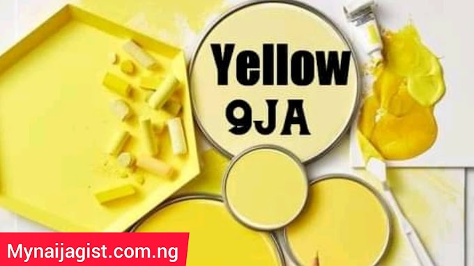 Yellow 9ja: Everything you should know about yellow 9ja reality TV show 2021