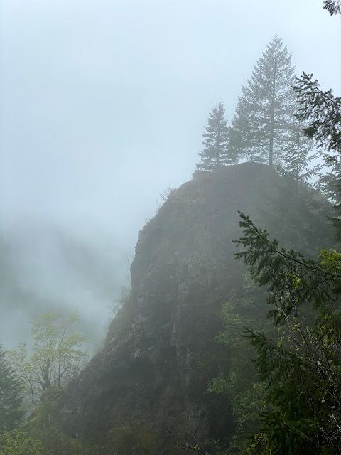 Cloudy background and foggy view of steep hill and trees