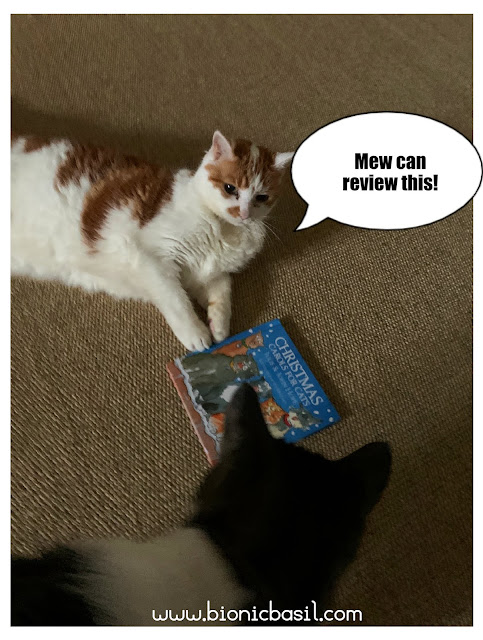 Feline Fiction on Fridays #115 at Amber's Library ©BionicBasil® Amber and Melvyn