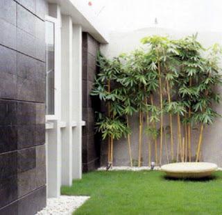 Contoh Gambar Desain Taman Rumah Minimalis 05