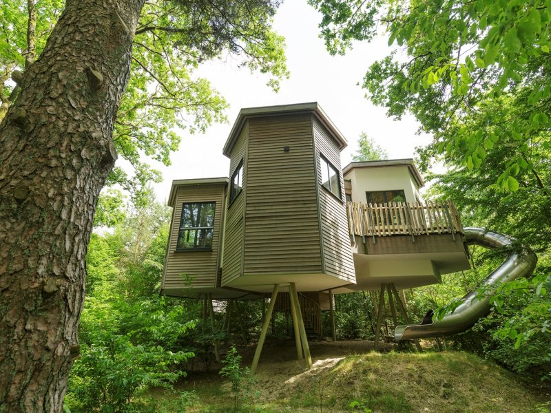 Choosing the Best Center Parcs Holiday in the Netherlands  - treehouses