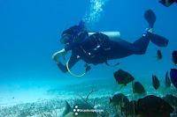 Costa Oeste - Riviera Maya - Viaje a medida - Luna de Miel - Brújula Viajes