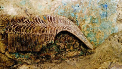 Η χτένα από ελεφαντόδοντο που βρέθηκε στο τάφο του πολεμιστή