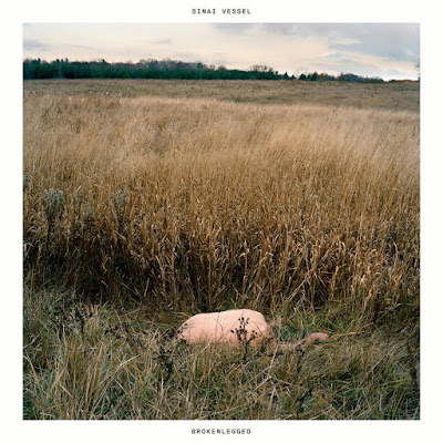 "SINAI VESSEL ""Brokenlegged"""