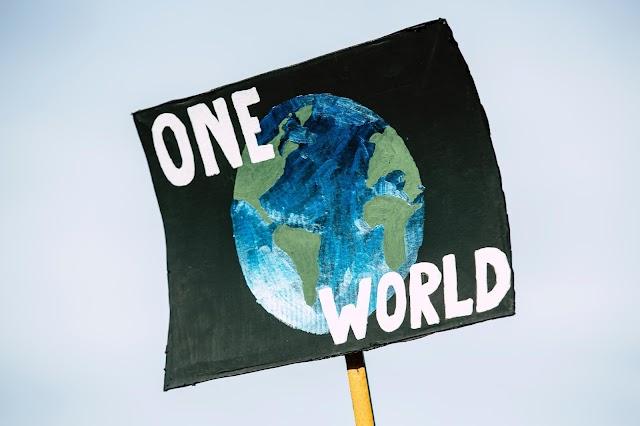 Cambio Climático y Sustentabilidad: Un recorrido sobre el abordaje de las problemáticas ambientales