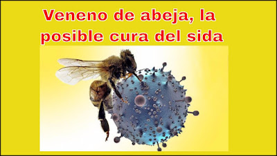 Buena noticia:Le encuentran la Cura al virus del Sida en el veneno de las Abejas.