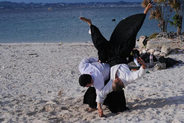 Apa itu Aikido