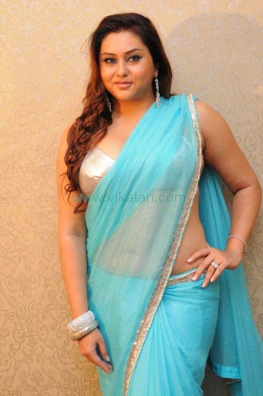 Actress Namitha In Blue Saree Pictures