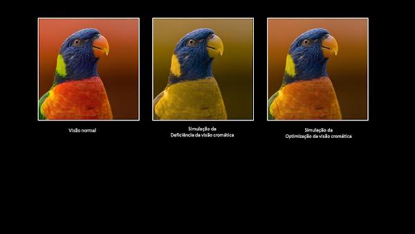 Um ecrã para todos: A Otimização da Visão Cromática do OPPO Find X3 Pro 5G adapta o seu ecrã a pessoas com deficiência visual cromática