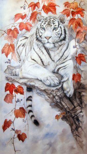 خلفيات حيوانات, خلفيات للاندرويد, خلفيات للايفون, خلفيات للهاتف, خلفيات نمر, صور, صور خلفيات, نمر, tiger wallpapers
