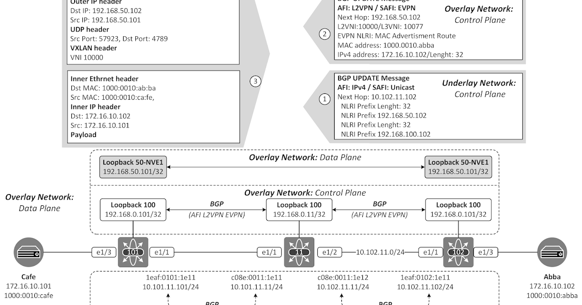 The Network Times: VXLAN Underlay Routing - Part III