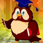 Games4King Graduate Owl E…