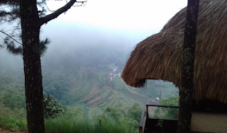 Pine Cave – Mountain Batu Malang