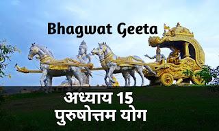 Bhagwat geeta adhyay 15