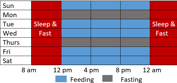 Table showing the eating and fasting window of eat-stop-eat method of intermittent fasting