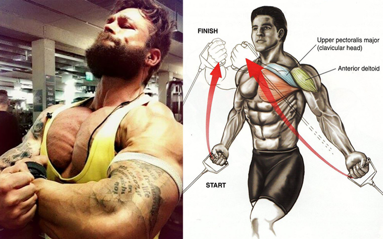 To Strengthen Your Chest Muscles And Make Them Pop Focus On Doing Enhancing Exercises Using The Right Workout Techniques Eating A Healthy