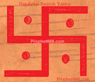 Indian rose chestnut Swastik Yantra