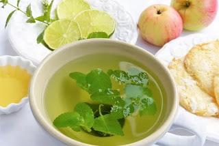 Peluang Usaha Tani Menanam Tanaman Obat / Herbal