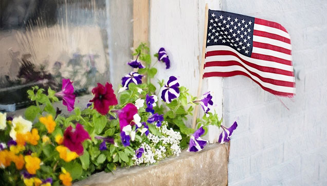 Happy 4th of July from Advanced Window Solutions