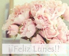 lunes-positivo-pretty-things