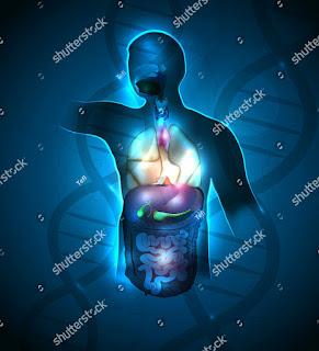 9 Cara Efektif Menjaga Kebugaran Tubuh