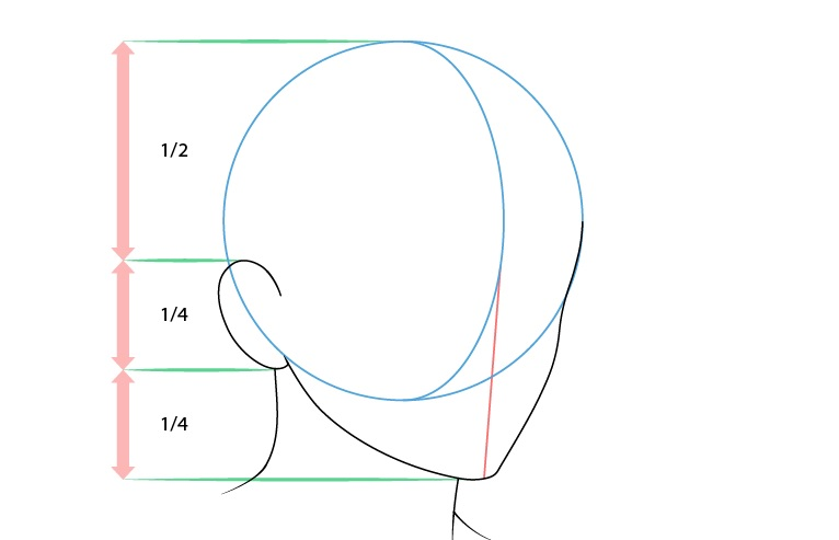 Anime laki-laki wajah 3/4 tampilan gambar telinga