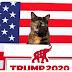 ΗΠΑ: Γιατί το μεγαλύτερο λόμπι της γάτας υποστηρίζει τον Τραμπ