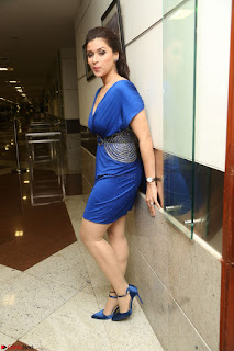 Mannara Chopra in Short Blue Dress at Rogue Movie Teaser Launch 1st March 2017 093.JPG