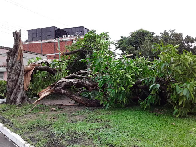 Al menos 18 sectores y más de 600 personas afectadas en Maturín por lluvias de este #4Ago