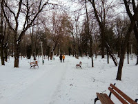83 de poze pentru 83 de ani de Parcul Cancicov!