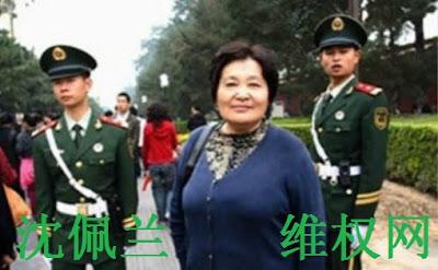 沈佩兰无罪——杨绍刚律师的辩护词