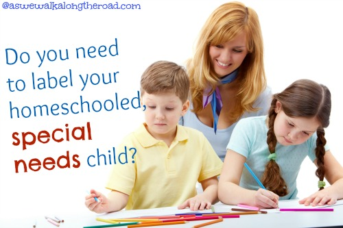 special needs and homeschooling