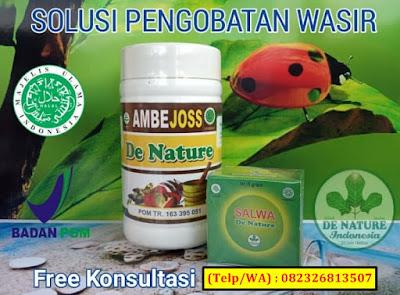 Obat Ambeien Hemoroid De Nature