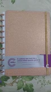 Caderno Inteligente Rosê/Dourado