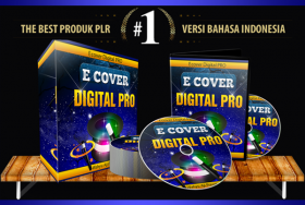 PLR Ebook Cover Digital