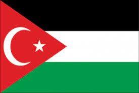 علم فلسطين وتركيا