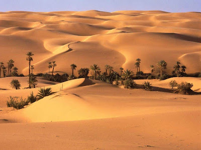 Beautiful Desert Normal Resolution HD Wallpaper 7